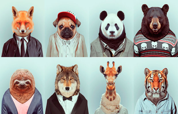 The Fashion Zoo Animals