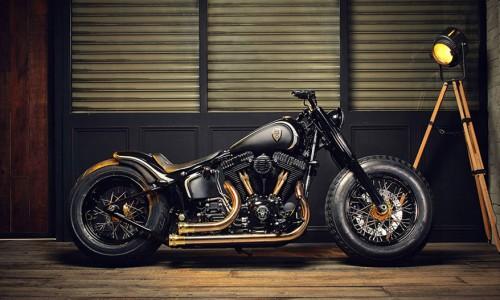 Harley Softail Slim Crowned Stallion