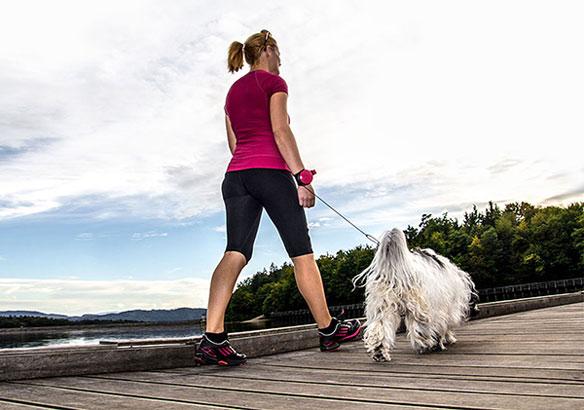 Correas para perro Lishinu