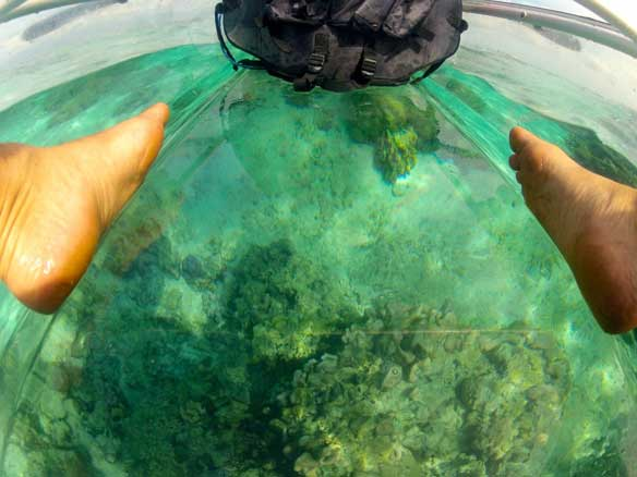 Kayak Transparente Molokini